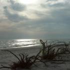 zdjęcie przedstawiające fragment morza